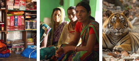 How tigers are helping women in India earn their stripes