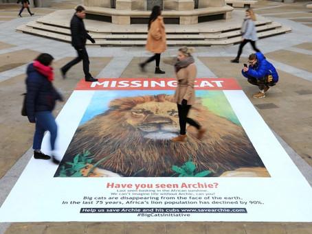 Street Artist Helps Raise Awareness Of Big Cat Population Decline