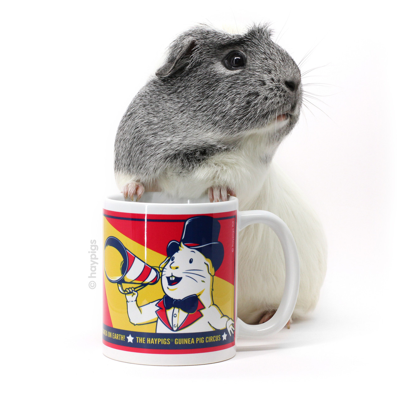 HayPigs_Pepper_Mug