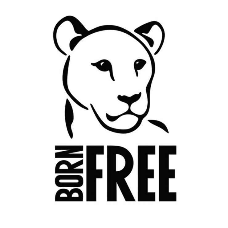 Born-Free-Website-Pic-740x740_center_top