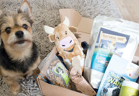 Subscription Boxes - would you buy one for your pets?