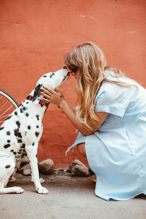 New Study Finds That Almost Two Thirds Of Dogs Can Talk Back To Their Owner