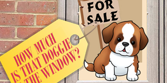 doggie_in_the_window