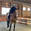 Thumbnail: EquiFit Mask infused with Ag Silver