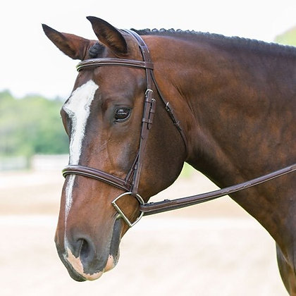 KL Select Aster Bridle