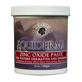 Equiderma Zinc Oxide Paste