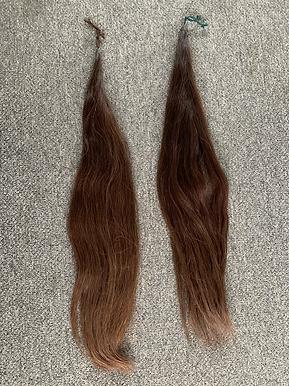 Chestnut Fake Tail