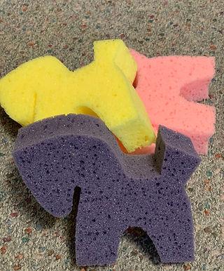 Pony Sponge