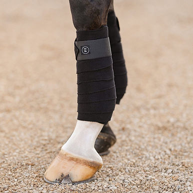 EquiFit Essential Polo