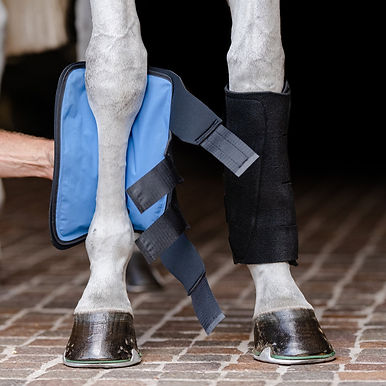 EquiFit Essential Gel Therapy Ice Boots
