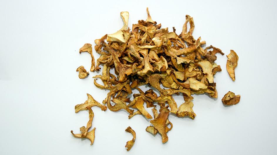 Dried Chantarelle.jpg