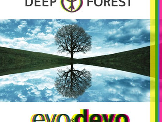 Deep Forest Remix Competition