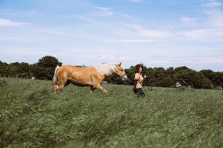 shooting equestre val d oise picardie ti