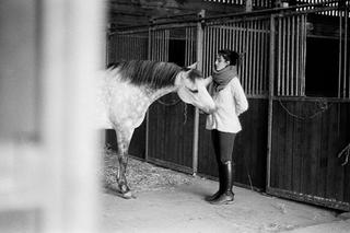 shooting photo equestre portrait val d o