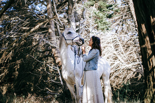 photographe equestre coye la foret luzar
