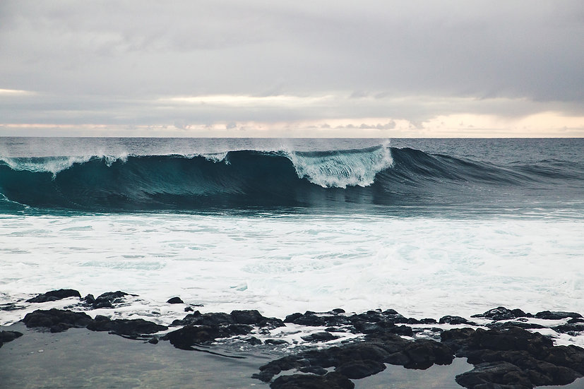 Waves, 2019