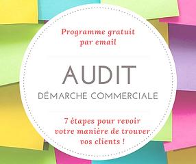 Audit-commercial.png