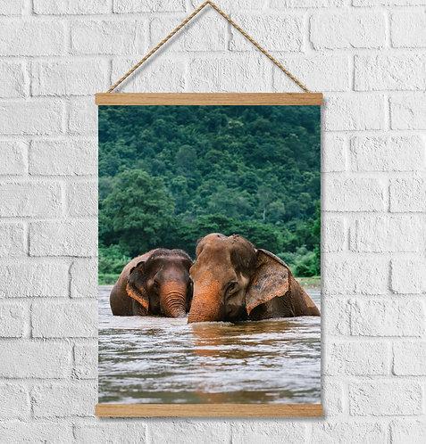 "Cuadro Lienzo ""elephants"""