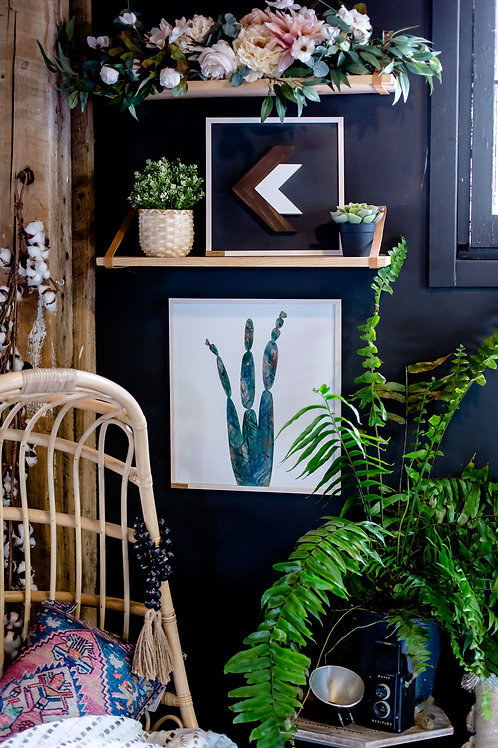 Emerald Dream Cactus