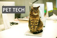 PET TECH Акселераторска програма