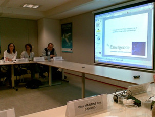 Meeting of KBBE Collaborative Working Group on Synthetic Biology