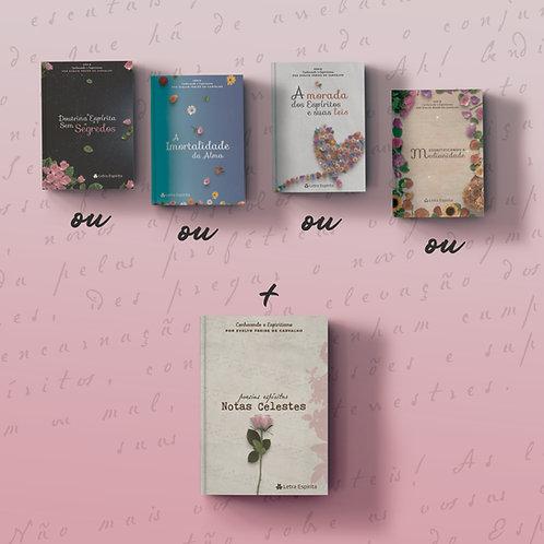 Livro doutrinário + Livro de Poesia