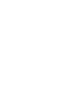 woman (1).png