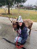 Jessica Scott Reindeer.jpeg