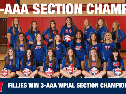 LH Girls Volleyball Section Champs!