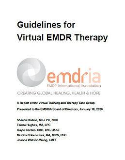 guidelines.virtual.image.jpg