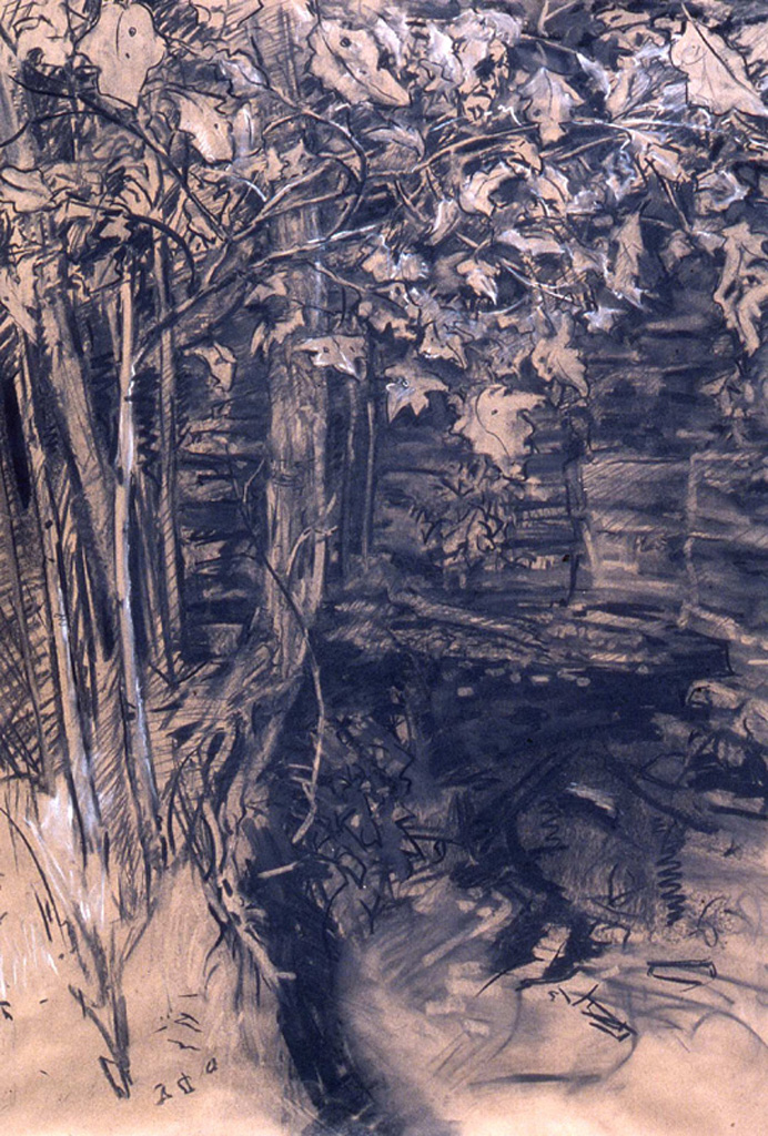 Landscape for Leonardo