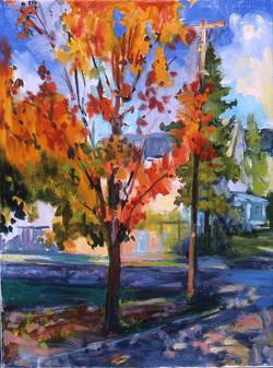 Autumn in Endicott