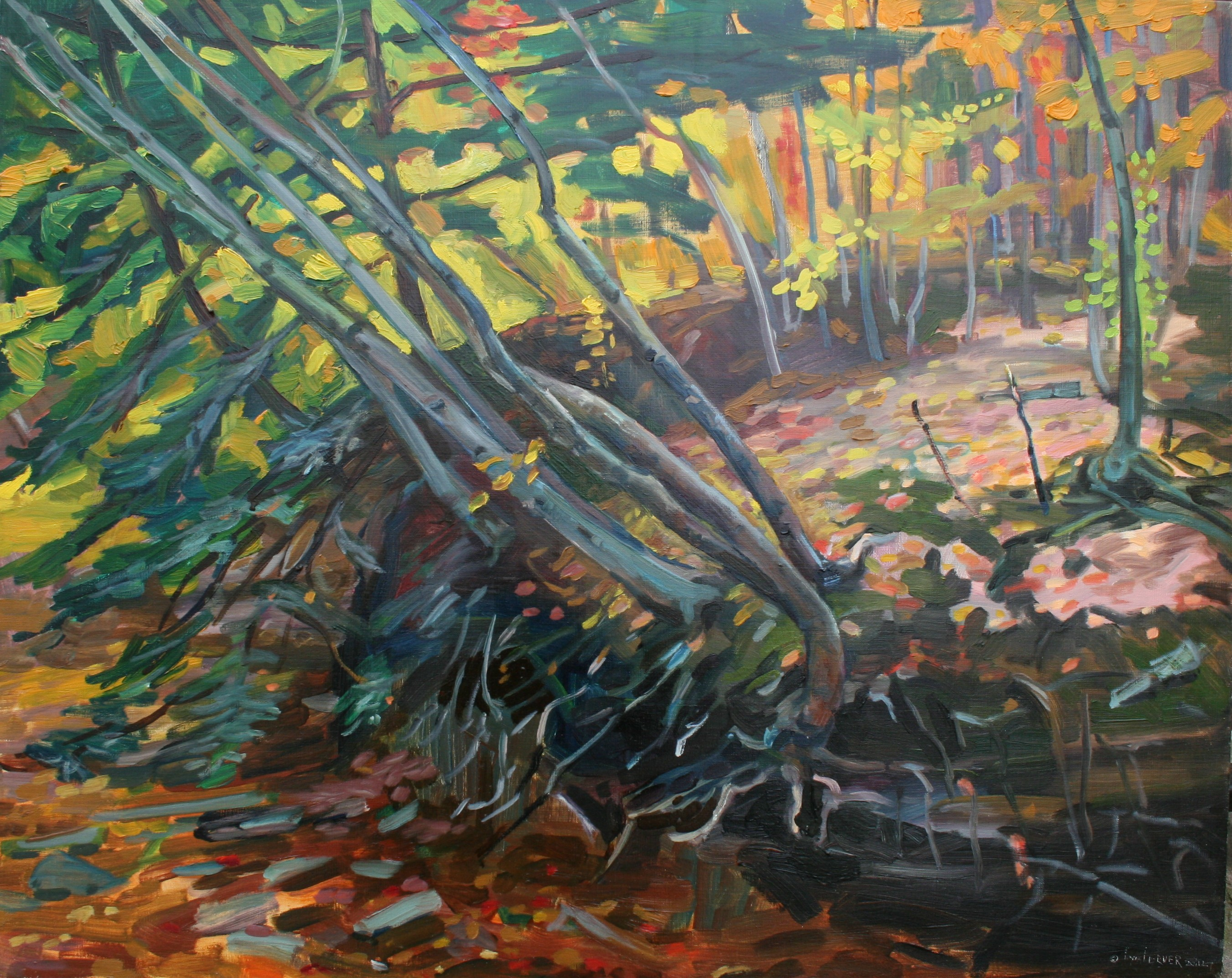 09 Bank of Dry Creek 24X30