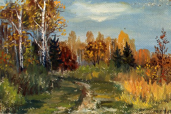 Trail in Izmailovo