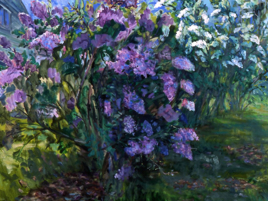 Lilacs 36X48