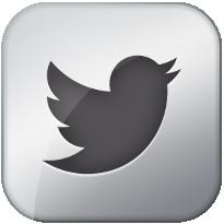 Twitter Metallic