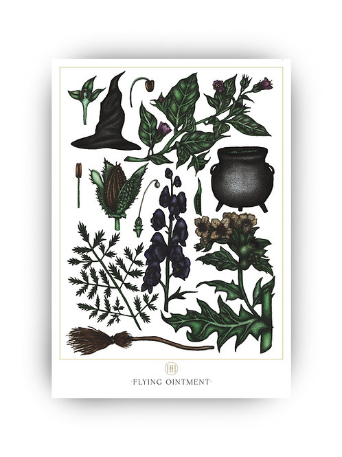 'Flying Ointment' Fine Art Print