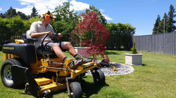 Lawn and sections mowing
