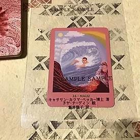 平成30年9月のマナカード
