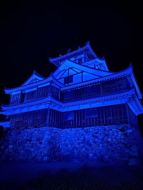 fukuchiyama_castle_3.JPG