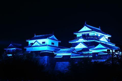 matsuyama_castle.JPG