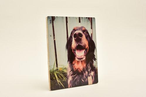 Wood Print 8x10