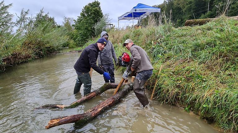Fischer schaffen Lebensraum