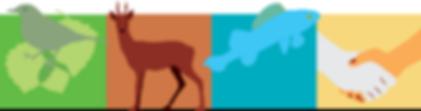 logo_allianz2.png