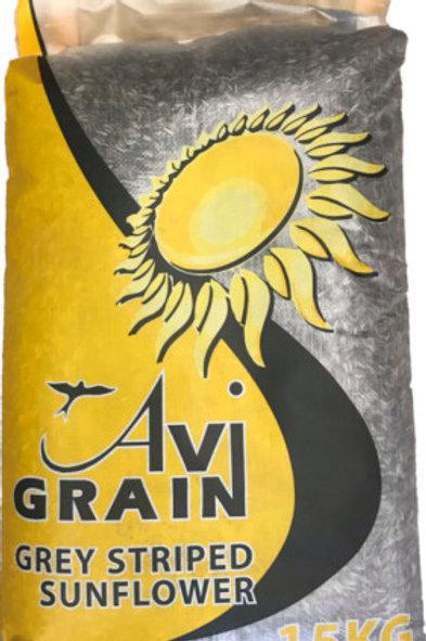 Avigrain Grey Sunflower