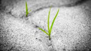 Se motiver … et le rester