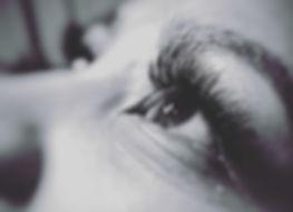 Winkz Close Up.jpg