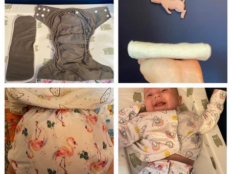 La petite Ourse All in One Nappy Review