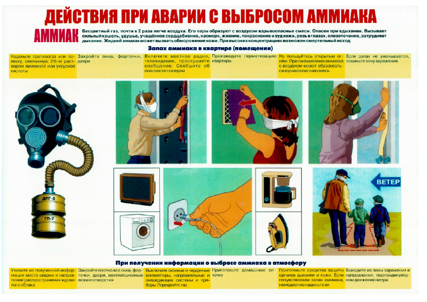 Плакаты_9.png