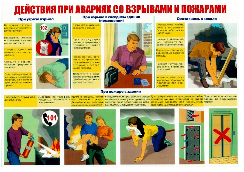 Плакаты_12.png